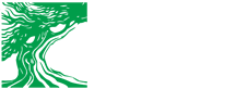 Bonsai Club Conegliano