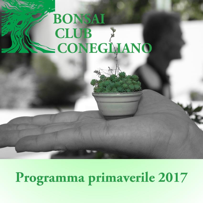 programma primaverile 2017