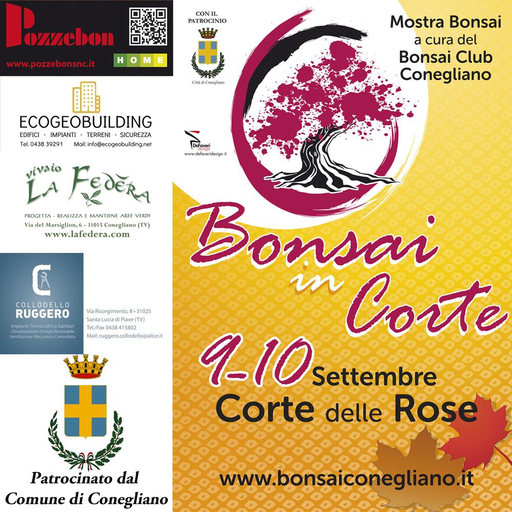 Bonsai in Corte delle Rose 2017
