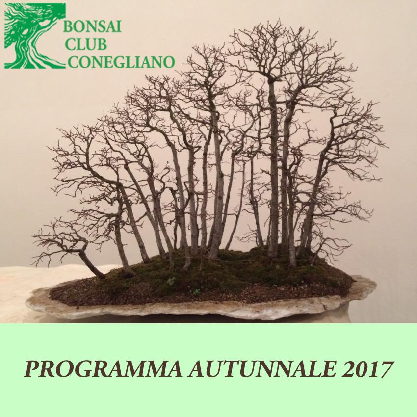 Logo autunno 2017
