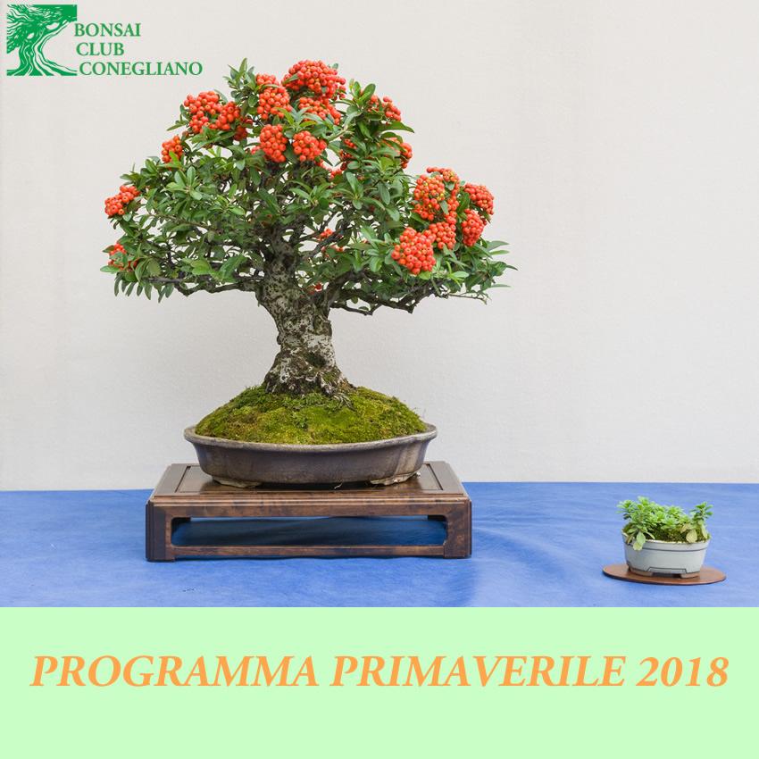 logoprimavera2018