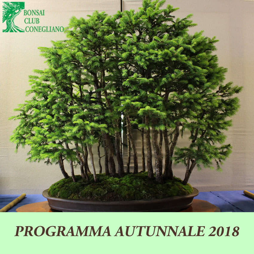 Programma autunnale 2018