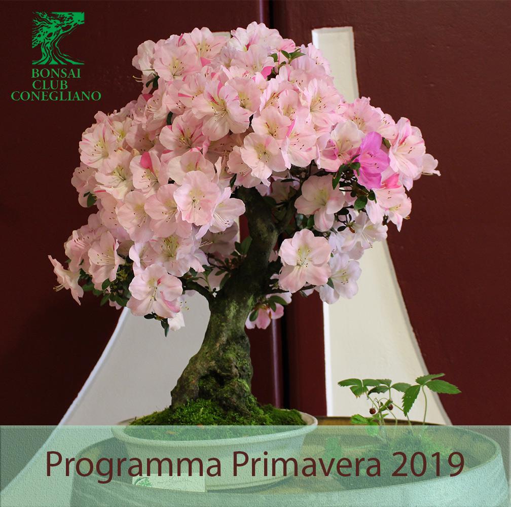 Programma Primaverile 2019