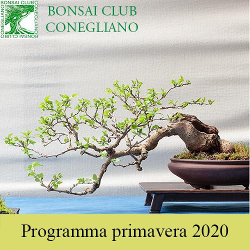 Programma Primaverile 2020