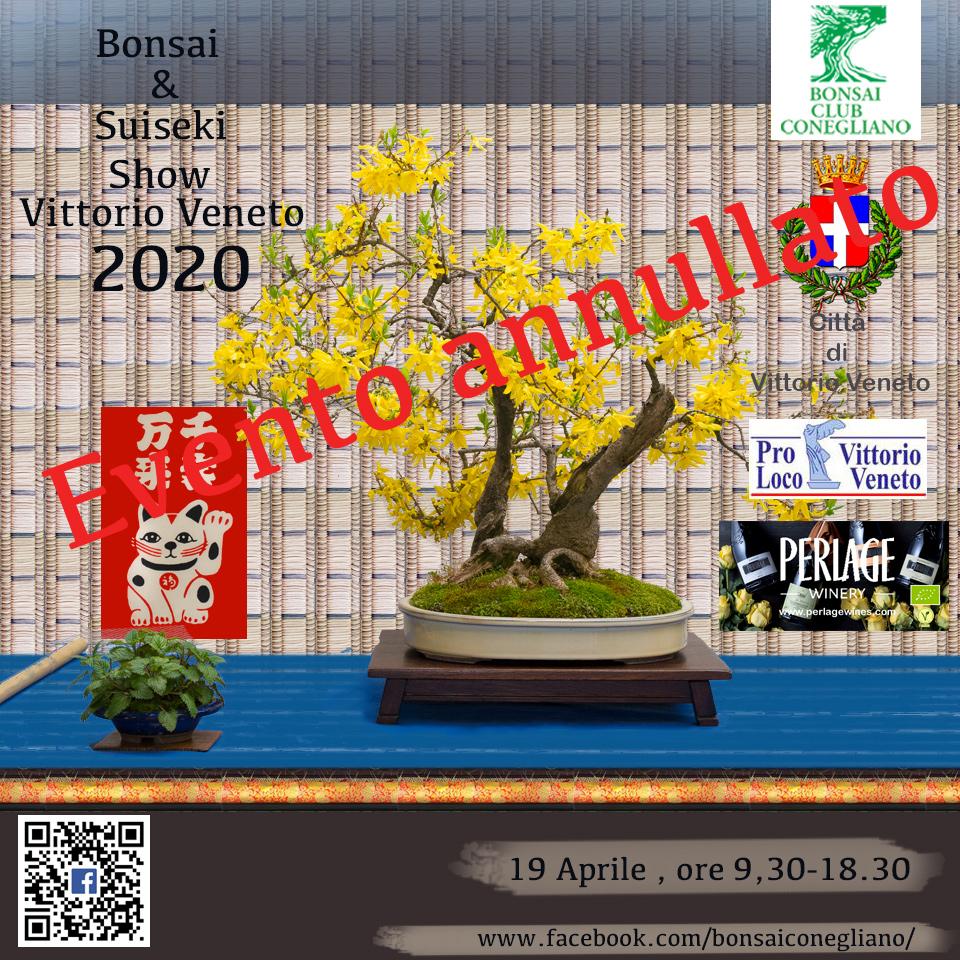 Bonsai Show a Vittorio Veneto 2020
