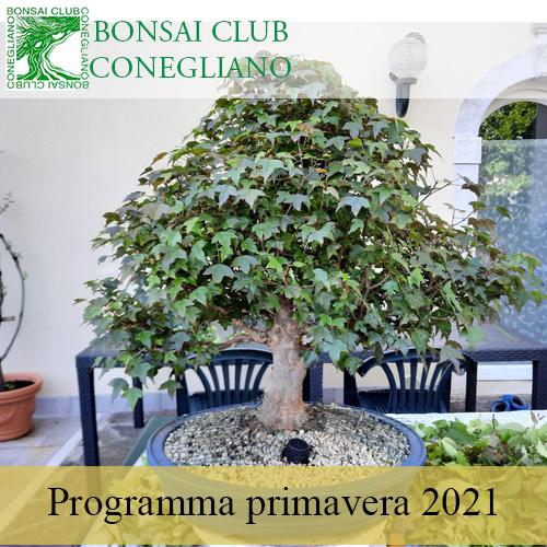 Programma Primaverile 2021